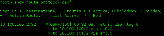Juniper ospf route